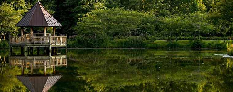 Projektowanie o wykonanie ogrodów – o czym warto pamiętać?